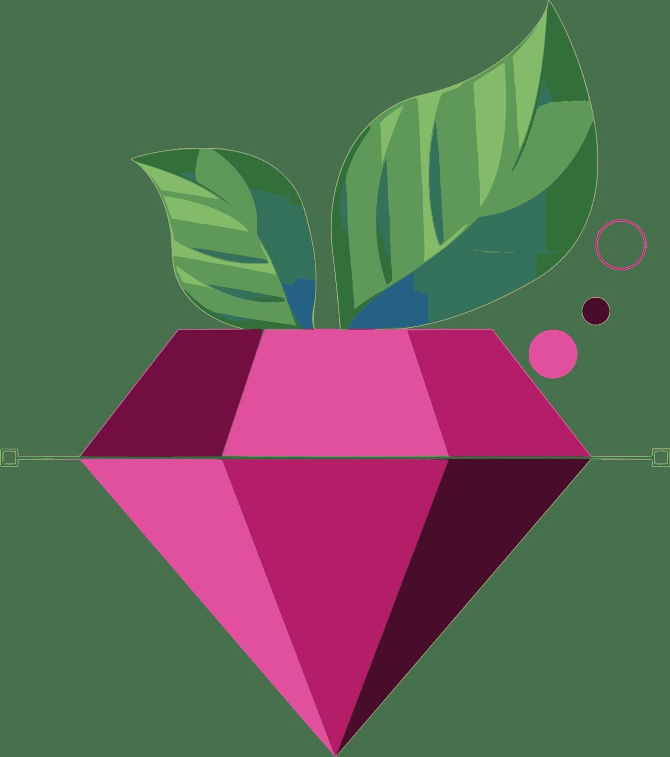 BerrySoft: Creare, Intretinere & SEO Site Prezentare Pret